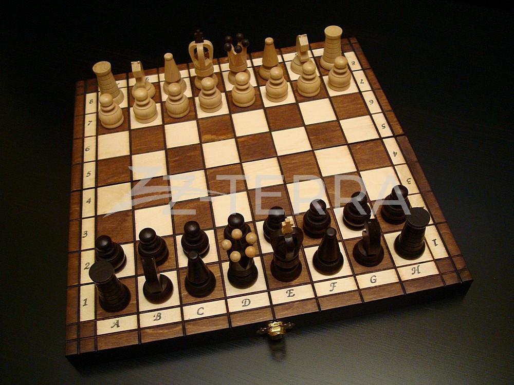 "Шахматы ""Константа"""