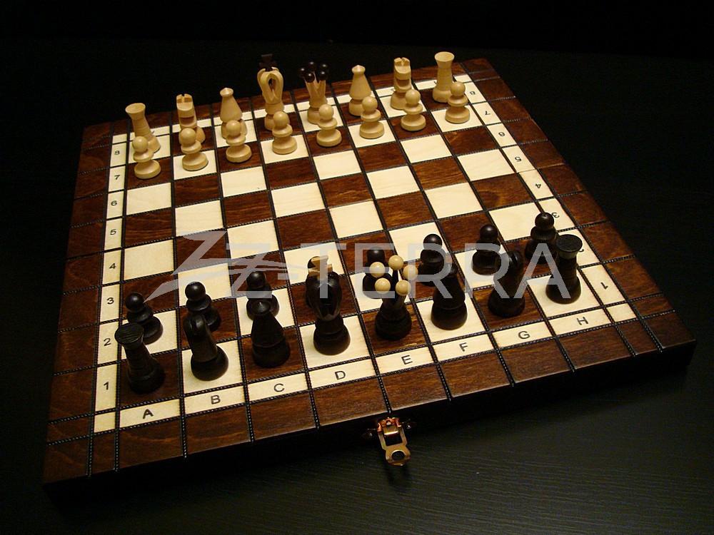 """Шахматы - шашки """"Тандем"""""""