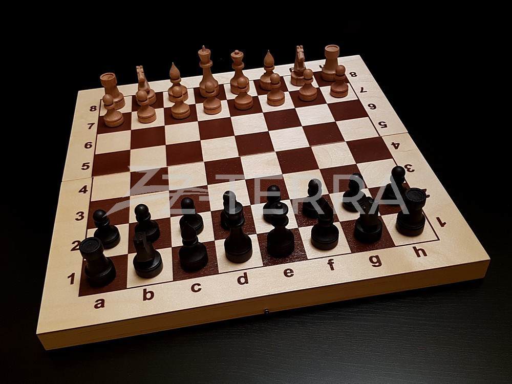 """Шахматы """"Игрок"""""""